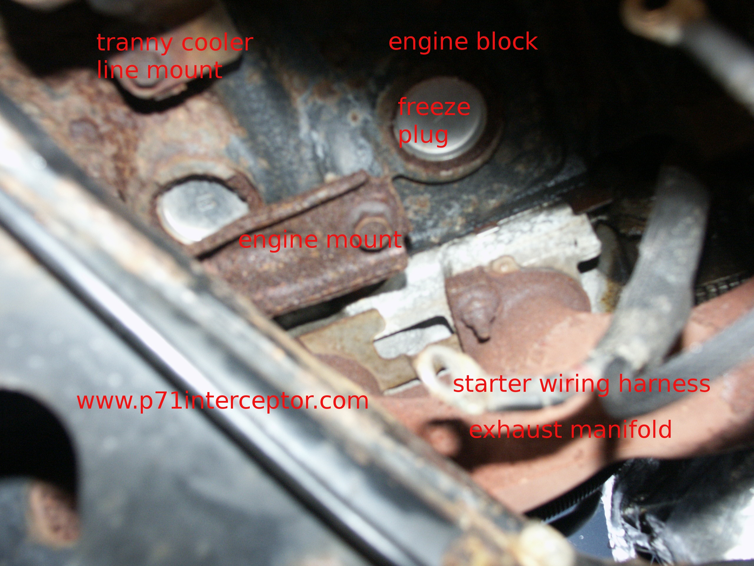 how to clean catalytic converter without removing