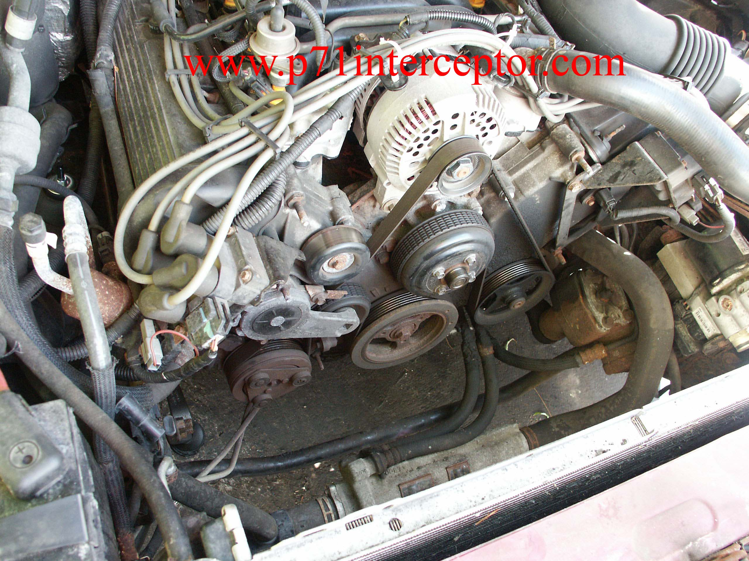 1995 Crown Vic Engine Diagram Starting Know About Wiring 1996 Ford Contour Fuel Injector Harness Victoria Power Steering Pump Replacement